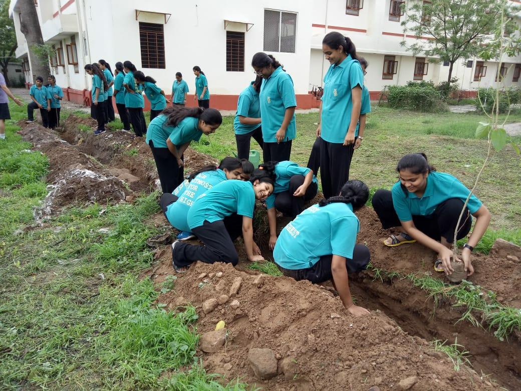 Tree Plantation programme held on 22nd July 2018
