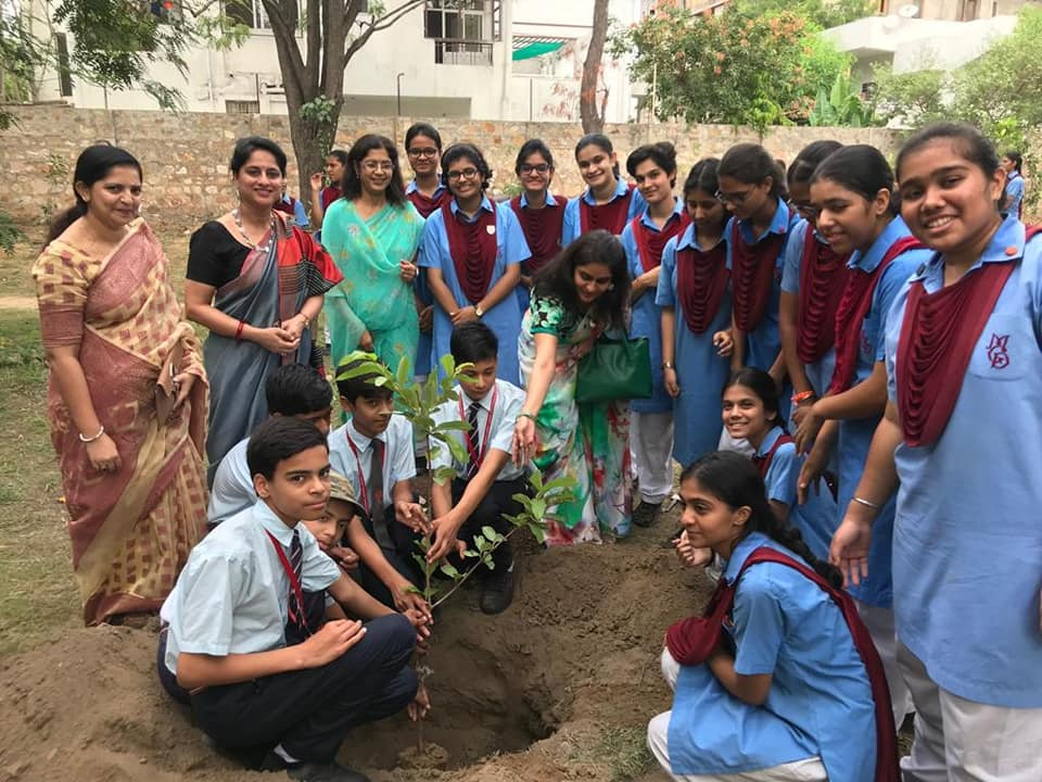 Plantation drive on the MGD campus